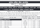 Pradesh 2 Loksewa Aayog Vacancy :- ppsc.p2.gov.np